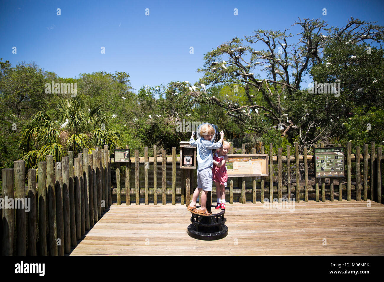 Children using lookout at the zoo Stock Photo