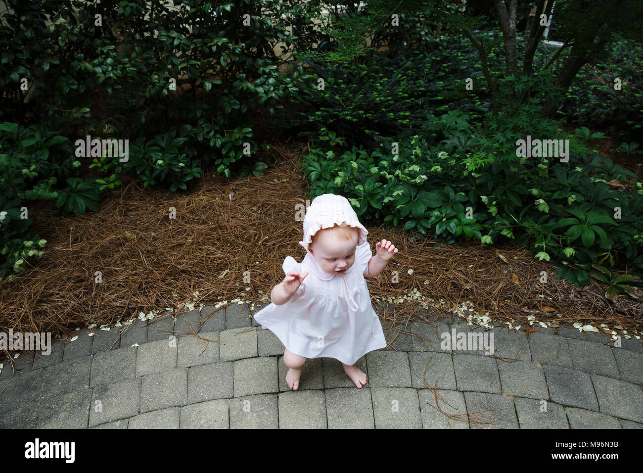 Baby playing with bushes and branches - Stock Image