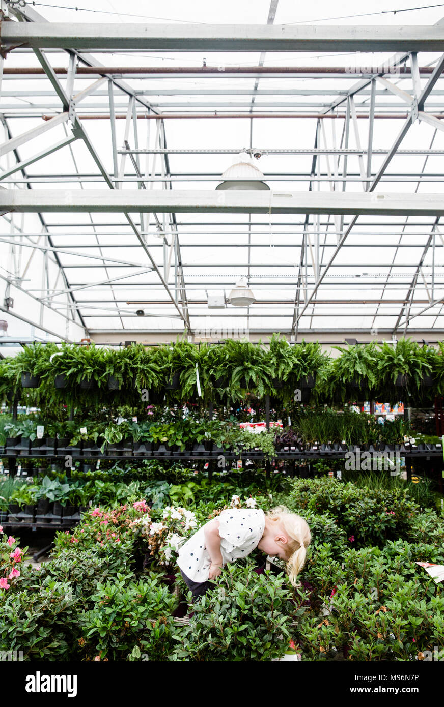 Girl in and around greenhouse within Garden Center - Stock Image