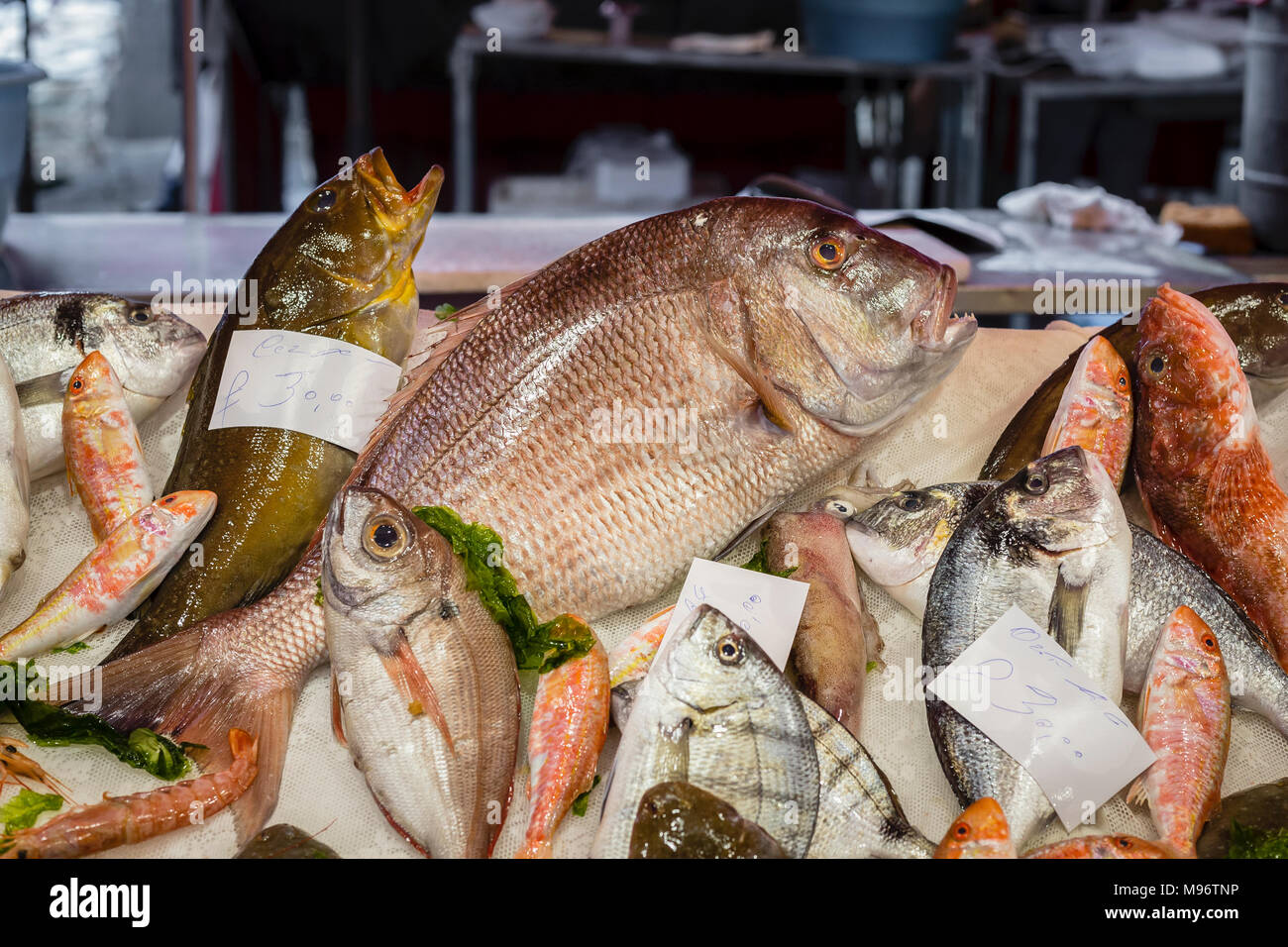 La Pescheria fish market, Catania, Sicily, Italy. - Stock Image