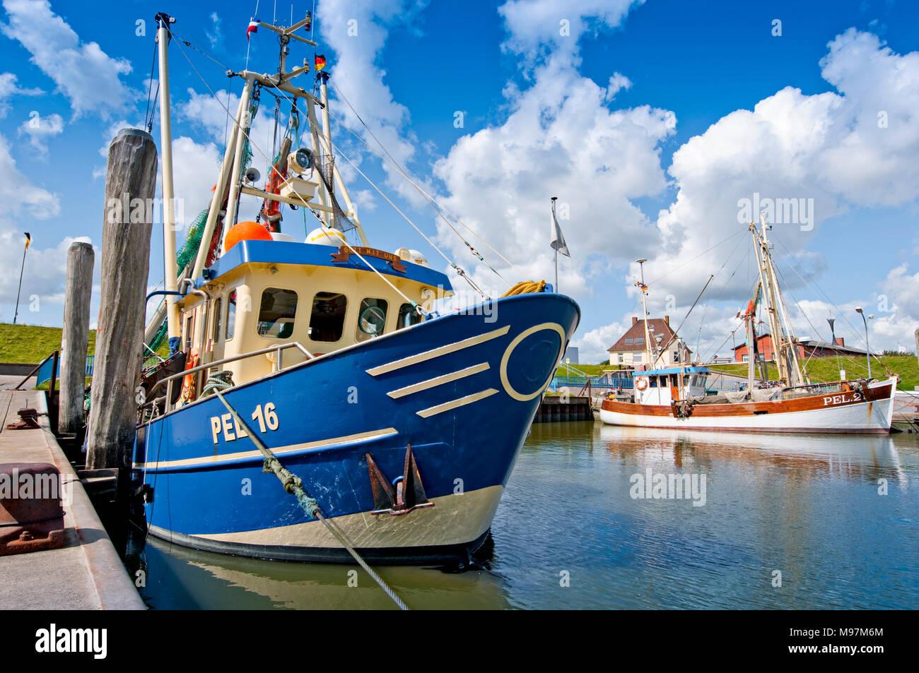 Deutschland, Schleswig-Holstein, Pellworm, Hafen, Anleger, Fischkutter - Stock Image