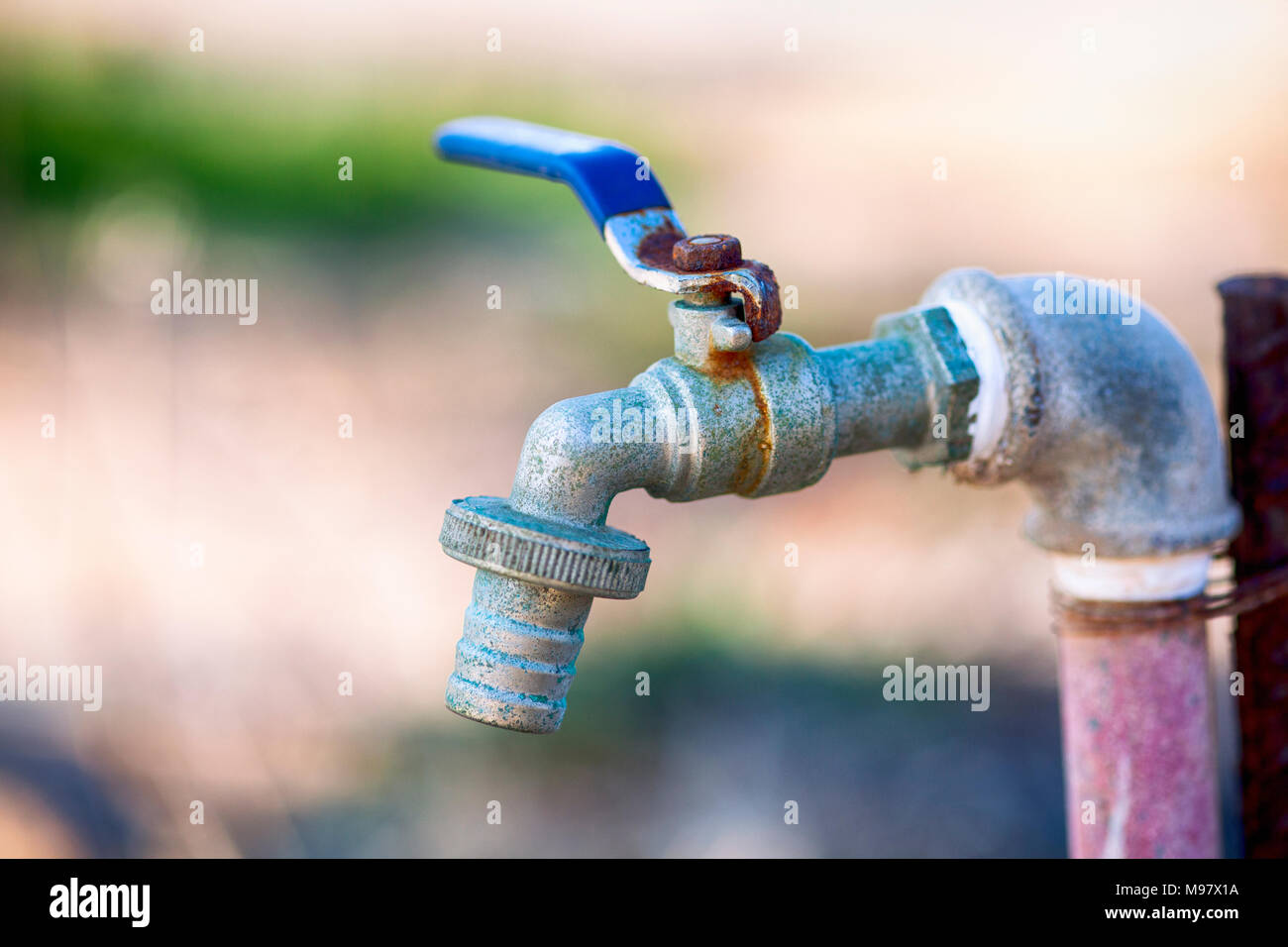 Garden water tap. Close-up. - Stock Image