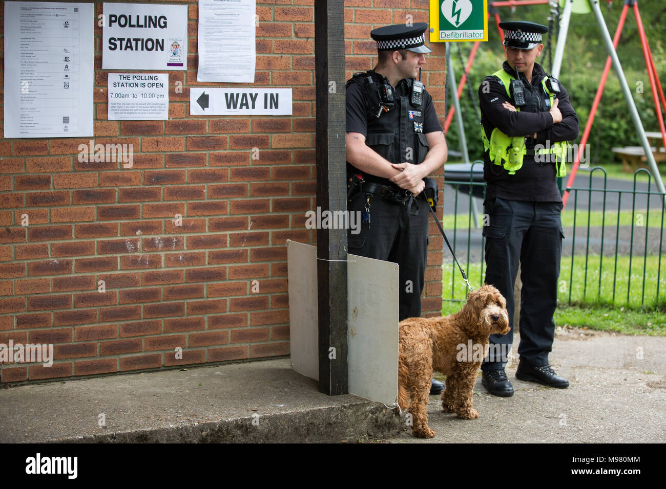 Sonning, UK. 8th June, 2017. Police officers look after a dog for its owner outside Prime Minister Theresa May's local polling station in Sonning. - Stock Image