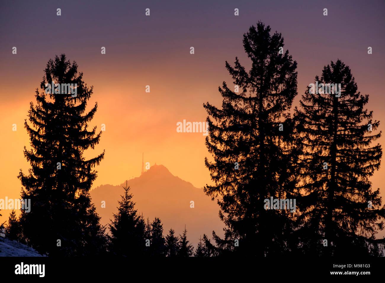 Grünten im Abendlicht vom Weg zwischen Hinterreute und Buronhütte bei Wertach, Bayrisch Schwaben, Bayern, Deutschland Stock Photo