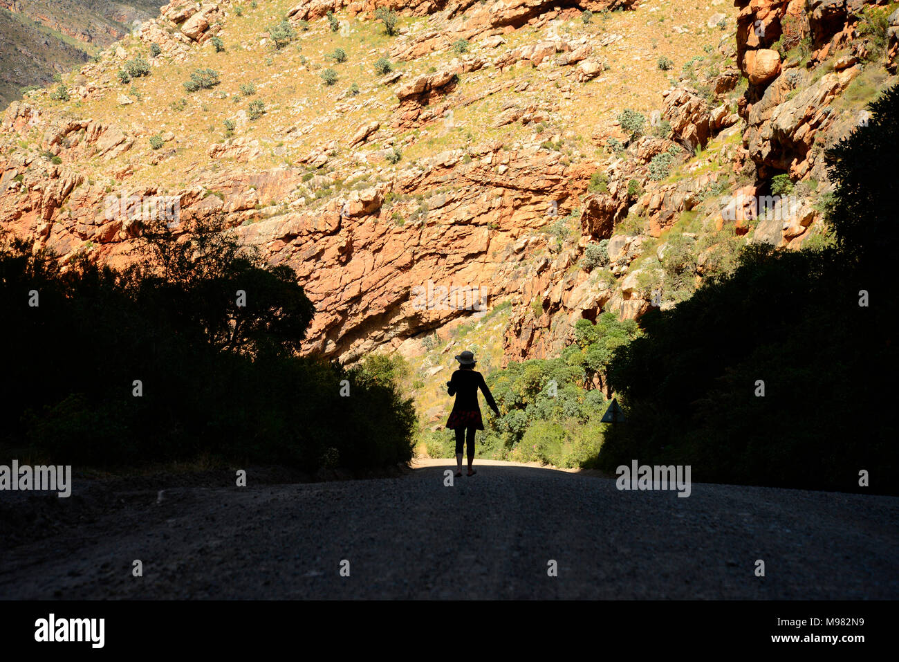 Karoo, South Africa. - Stock Image