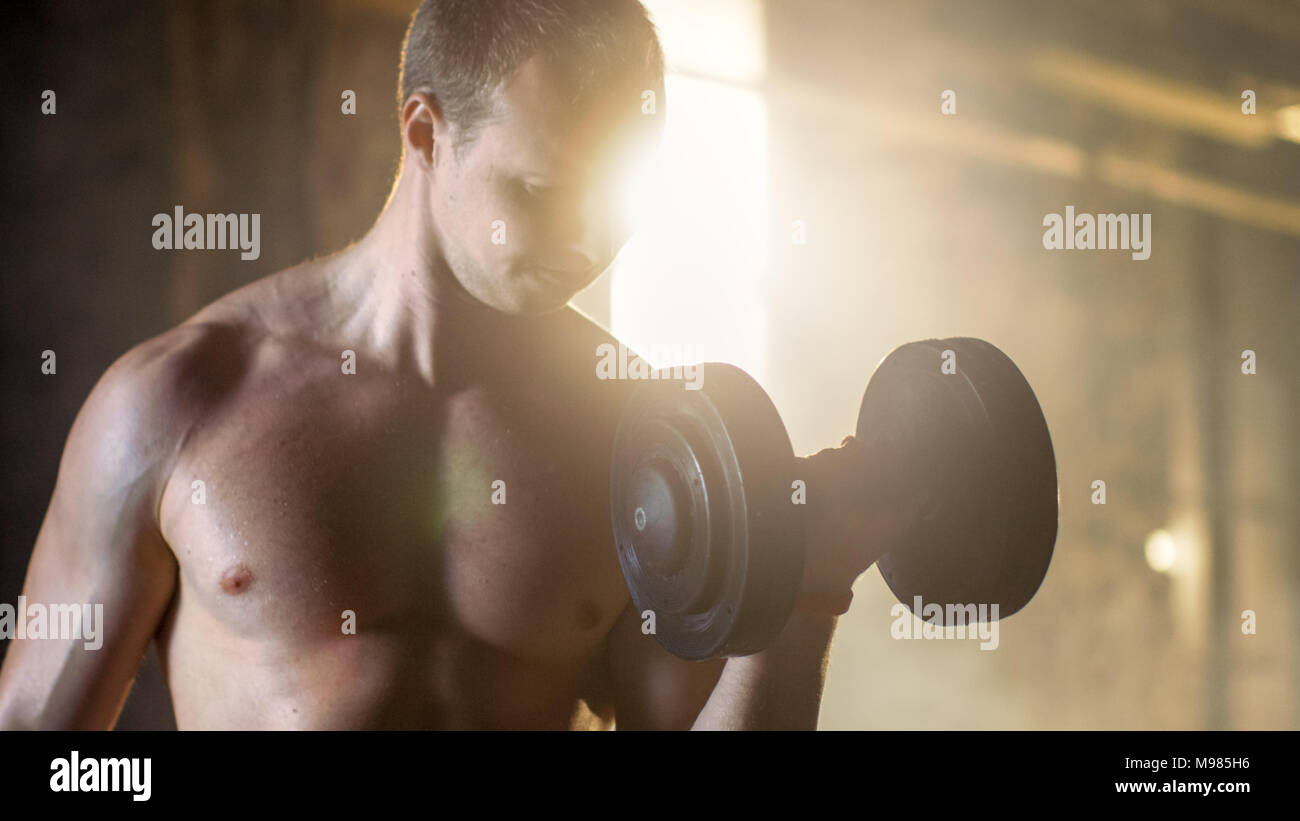 Muscular Shirtless Man Does Biceps Curls with Dumbbells Exercise, as Part of His Bodybuilding Gym Training. - Stock Image