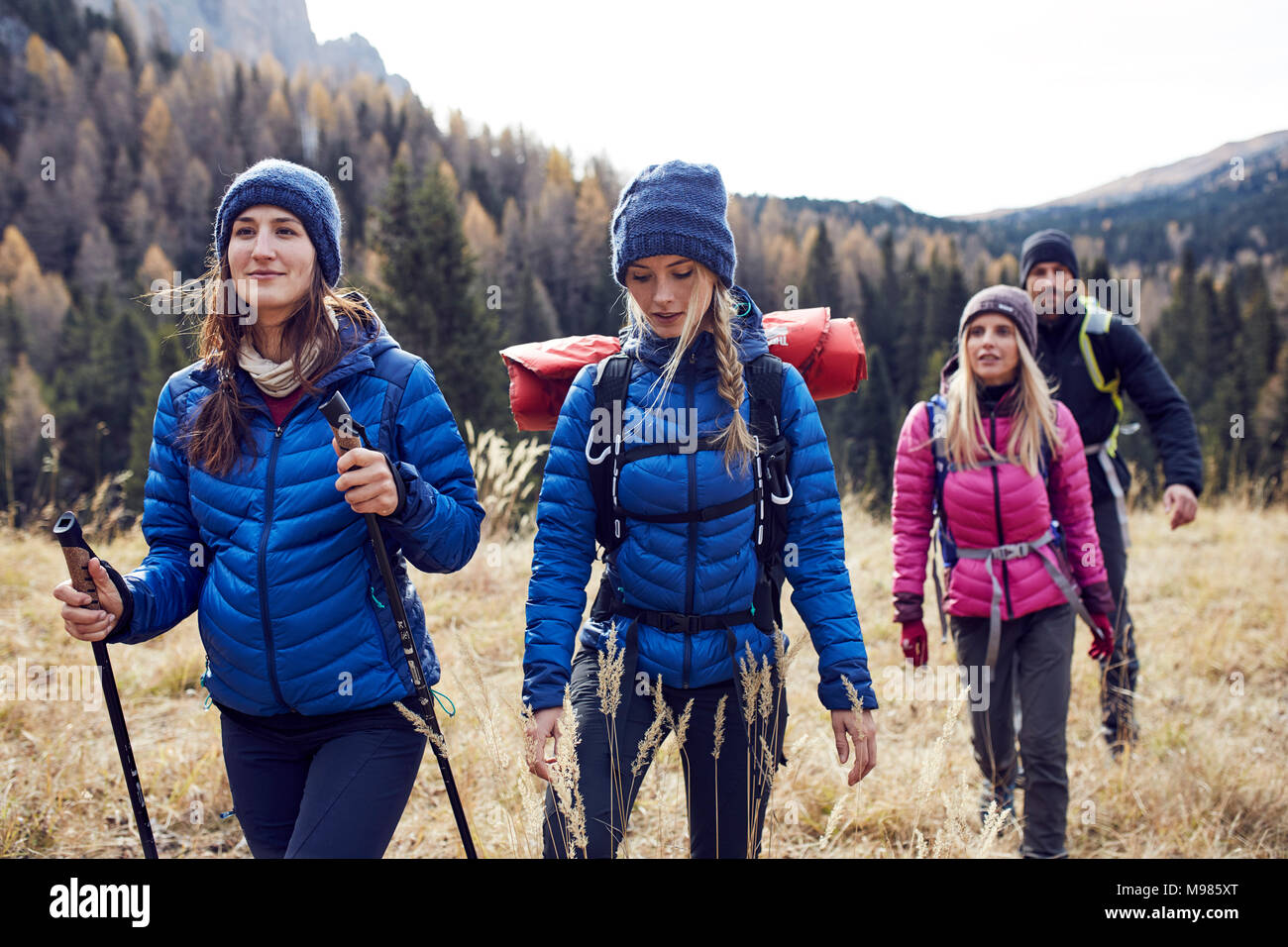 Group of friends hiking in the mountains - Stock Image