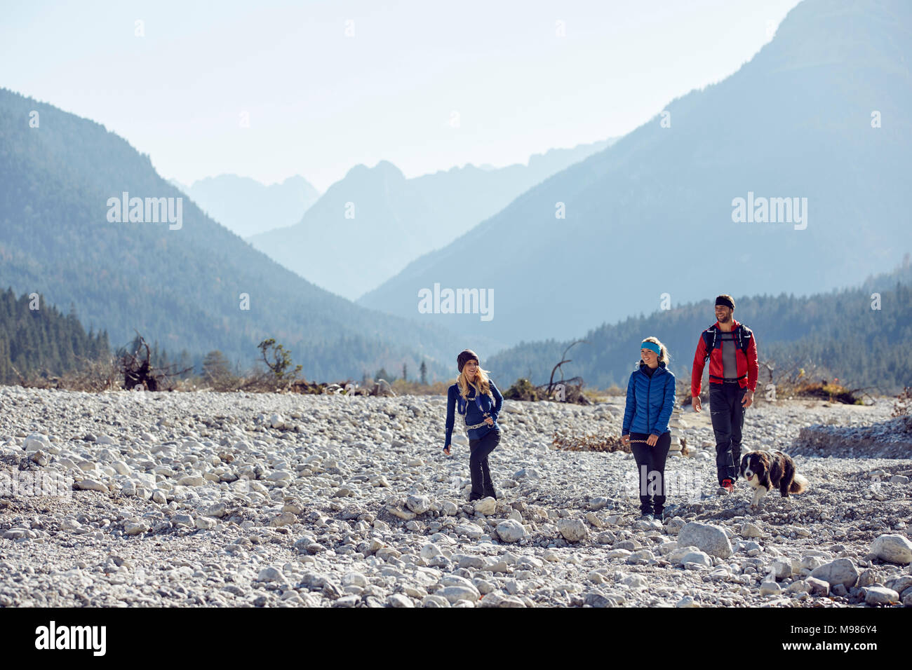 Germany, Bavaria, Karwendel, group of friends hiking with dog in dried riverbed - Stock Image
