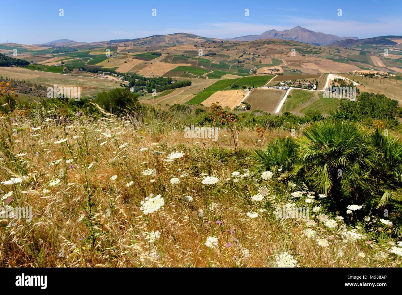Aussicht vom Theater von Segesta, auf Restaurant Agora di Segesta und Vila Palmeri, griechische Tempelanlage Segesta, Provinz Trapani, Sizilien, Itali - Stock Image