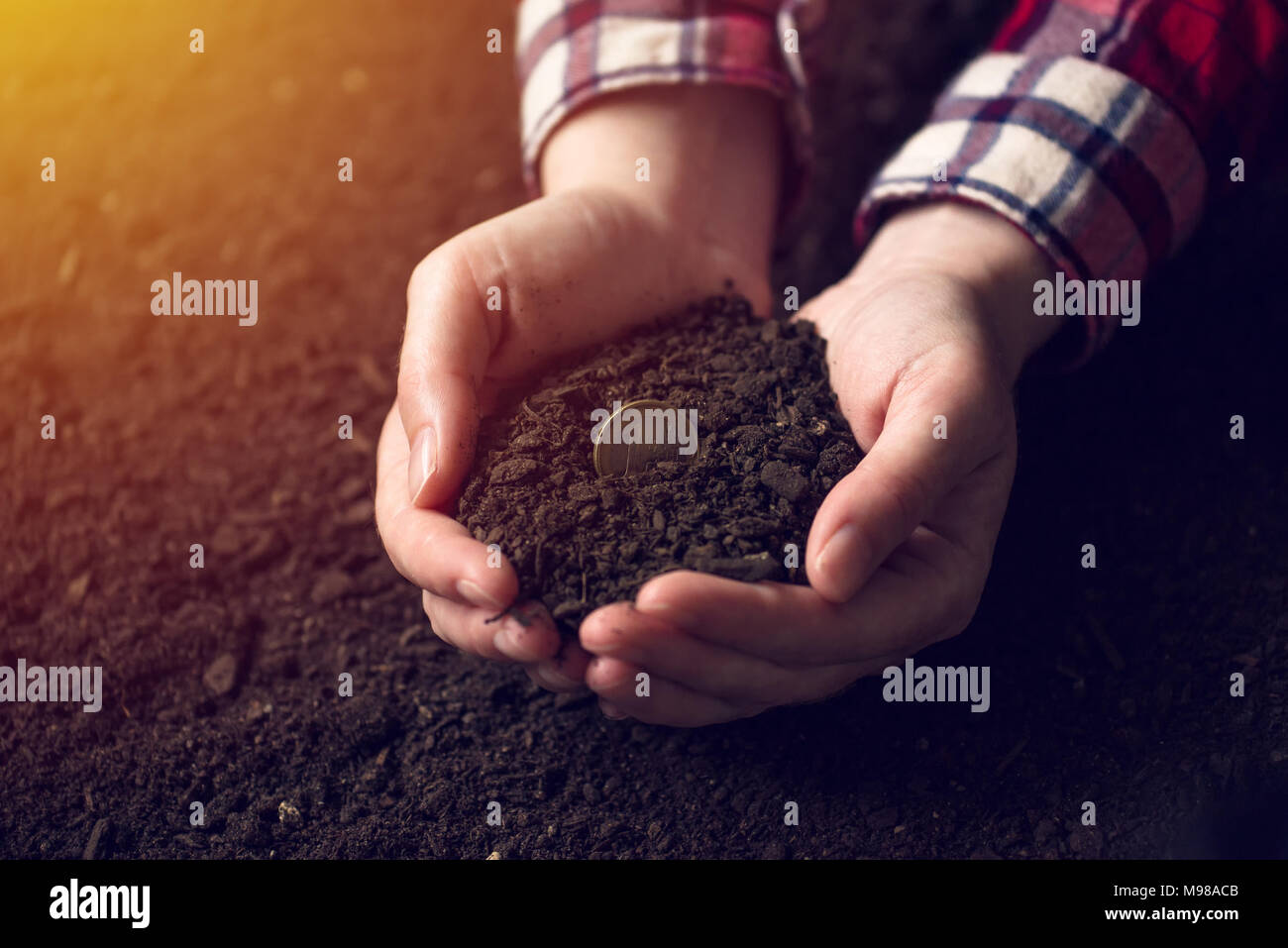 Harvesting money, one euro coin in handful of soil, female farmer in cultivated field - Stock Image