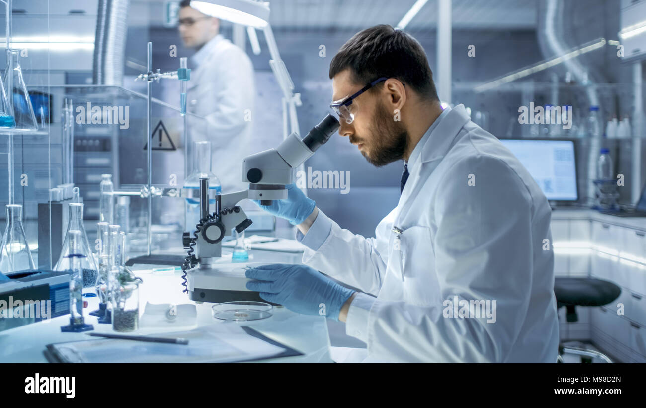In a Modern Laboaratory Research Scientist Examines Substance Under Microscope. - Stock Image
