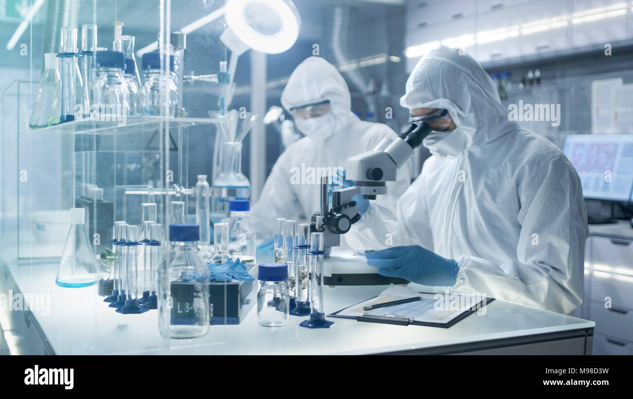 In a Secure High Level Laboratory Scientists in a Coverall Conducting a Research. Chemist Adjusts Samples in Petri Dish with Pincers and then Examins Stock Photo
