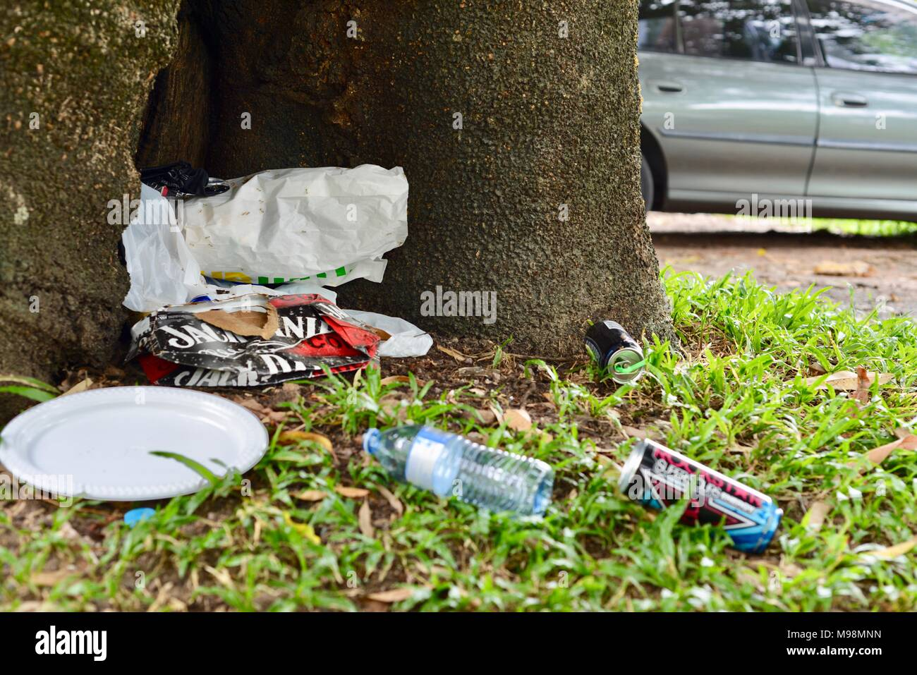 Rubbish left by a bunch of losers near a tree, big Crystal Creek QLD 4816, Paluma range national park, Australia - Stock Image