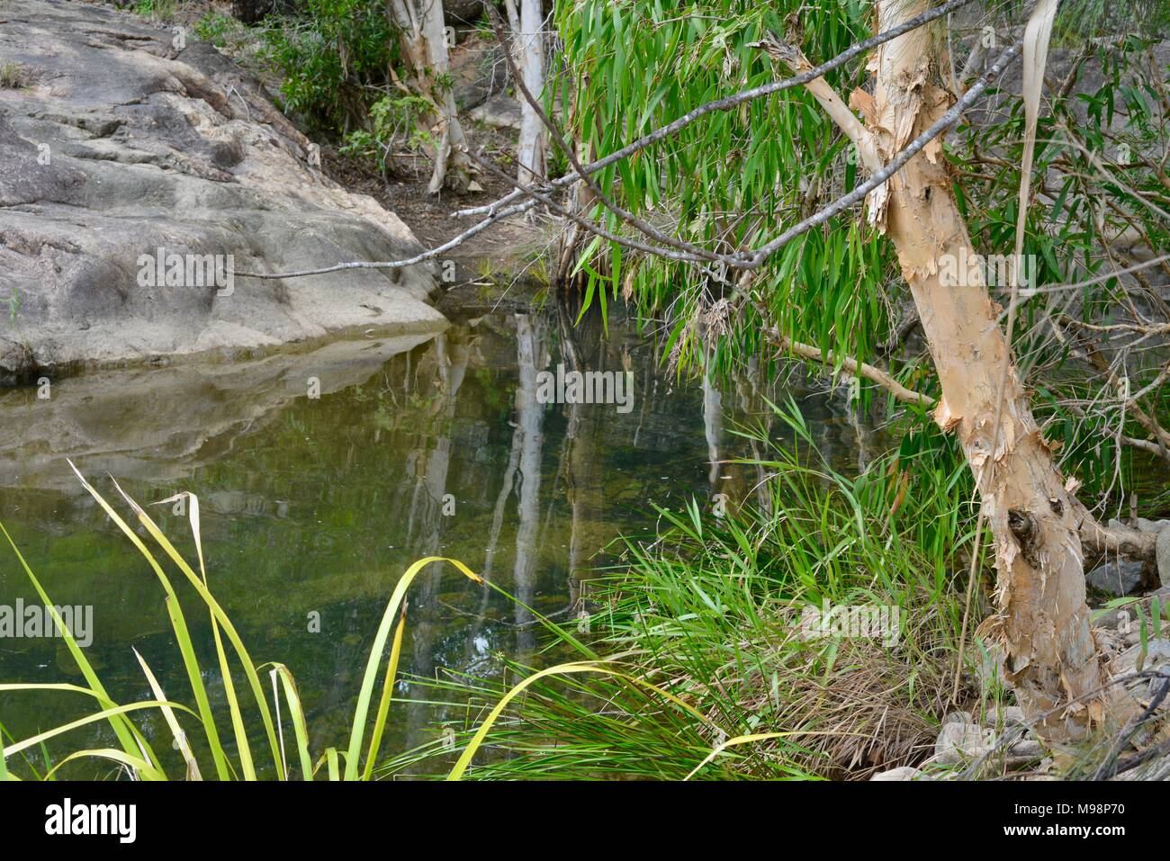 Crystal Creek QLD 4816, Paluma range national park, Australia - Stock Image