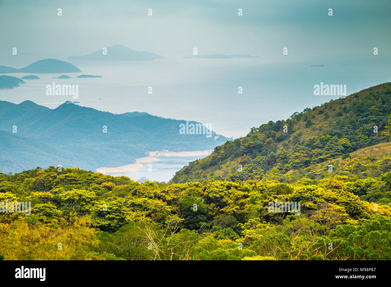 Nature scenery in Po Lin Monastery, Hong Kong - Stock Image