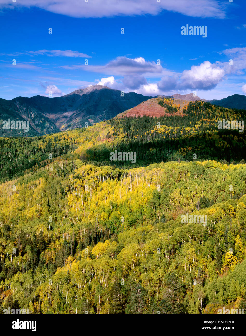 Silver Mountain, San Juan National Forest, Colorado - Stock Image