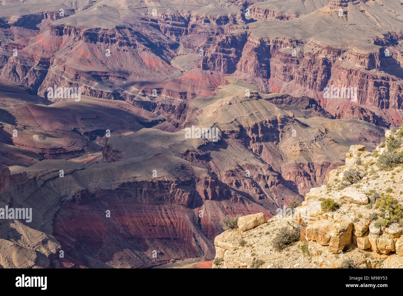 Grand Canyon South Rim Landscape - Stock Image
