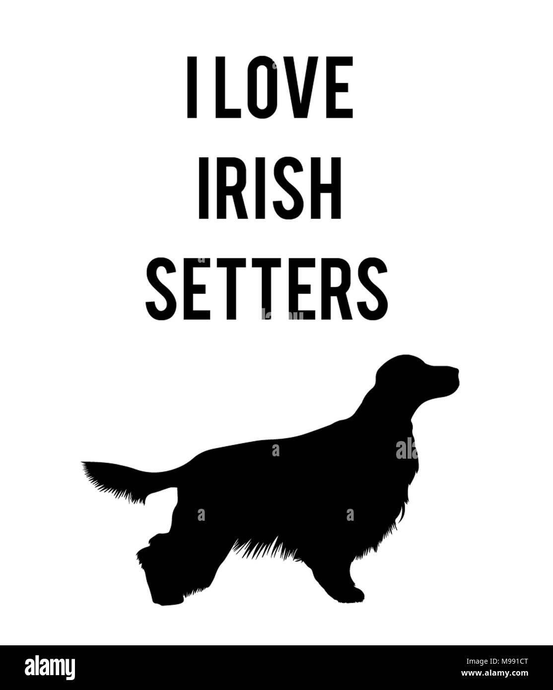 I love Irish Setters - Stock Image