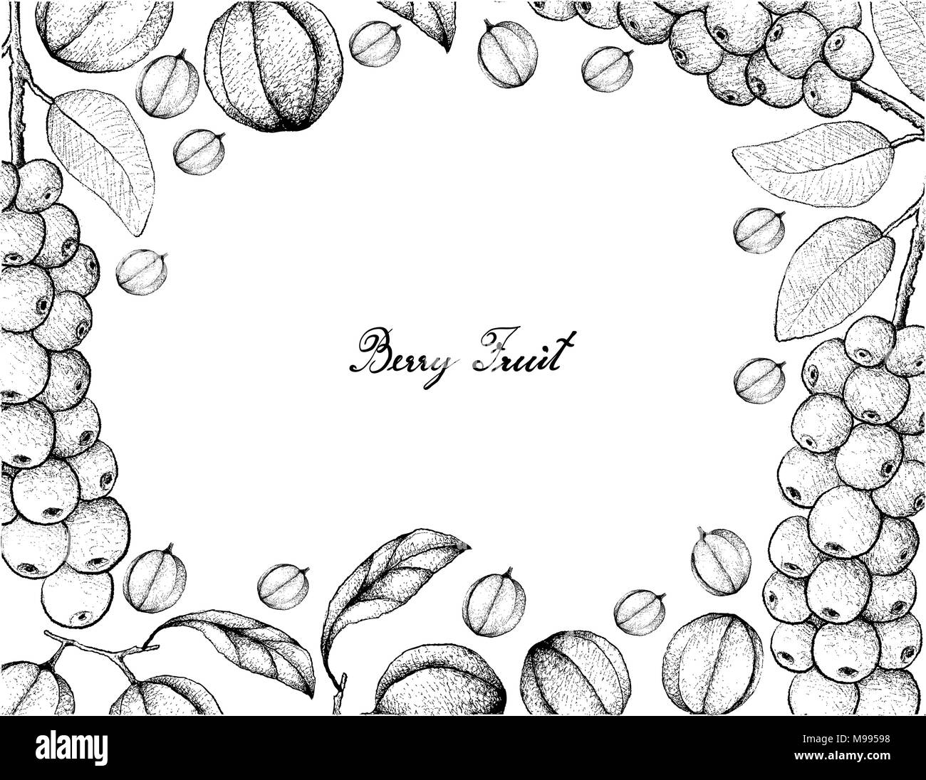 Wild Berries Black and White Stock Photos & Images - Alamy