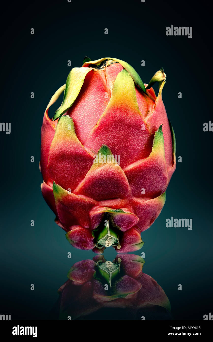 Dragon fruit ( pitaya ) still life  with reflection on surface - Stock Image