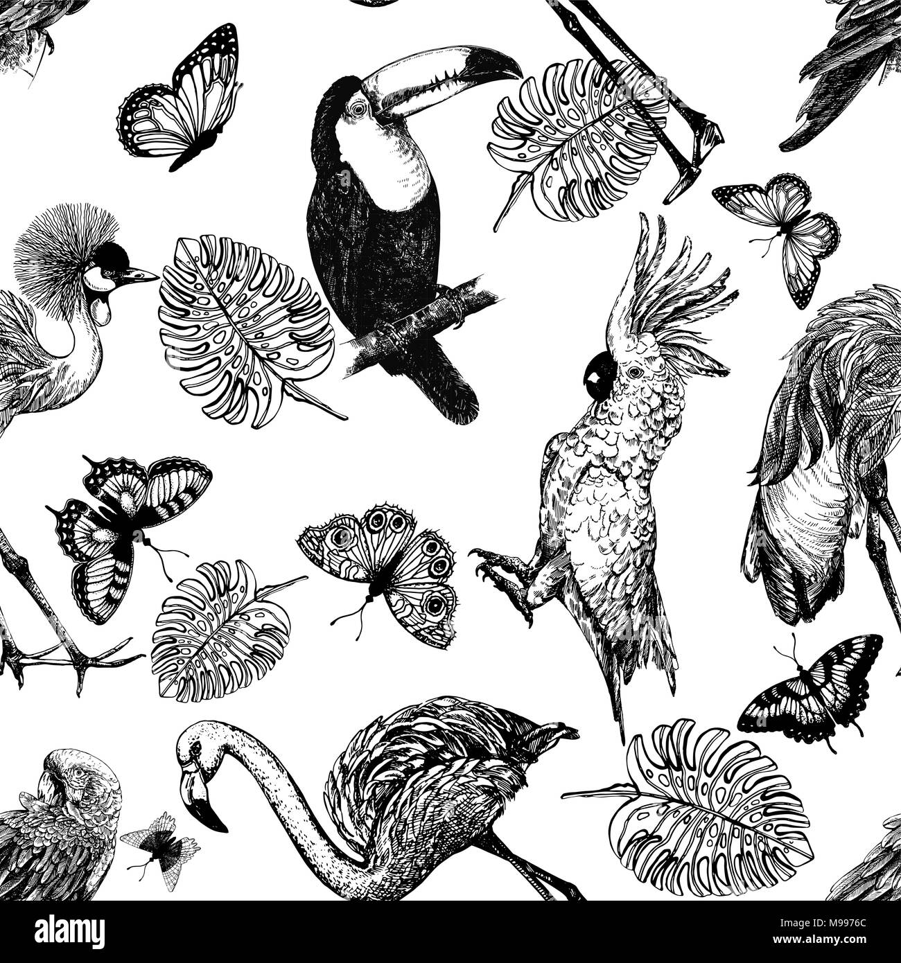 Seamless pattern of hand drawn sketch style exotic birds, plants and butterflies isolated on white background. Vector illustration. Stock Vector