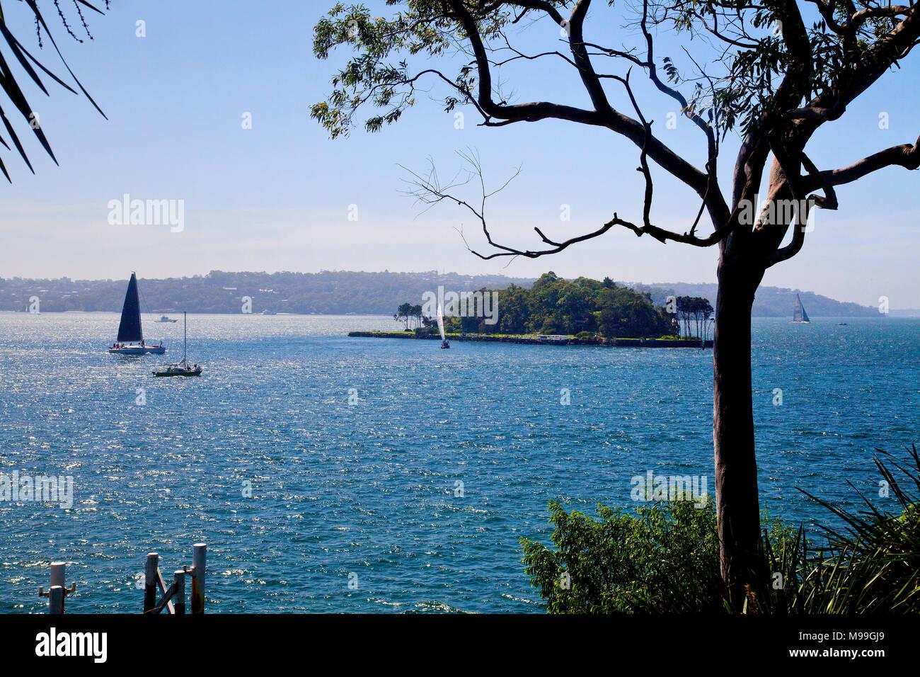 Harbourside Sydney,Darlingpoint - Stock Image