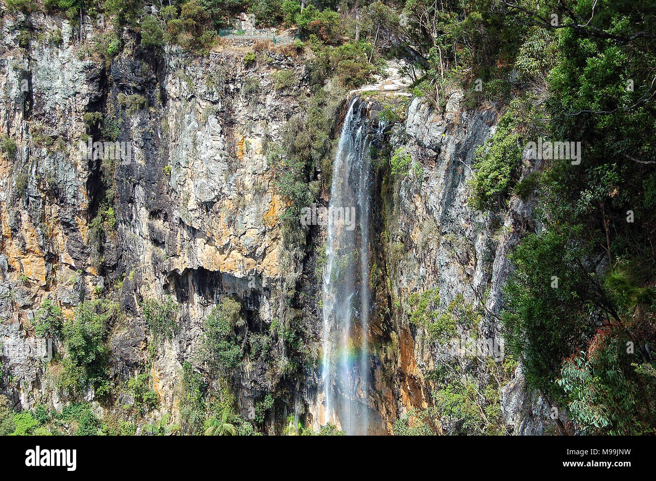 Rainbow and the majestic Purling Brook Falls in the Gondwana Rainforests - Springbrook, Queensland, Australia - Stock Image