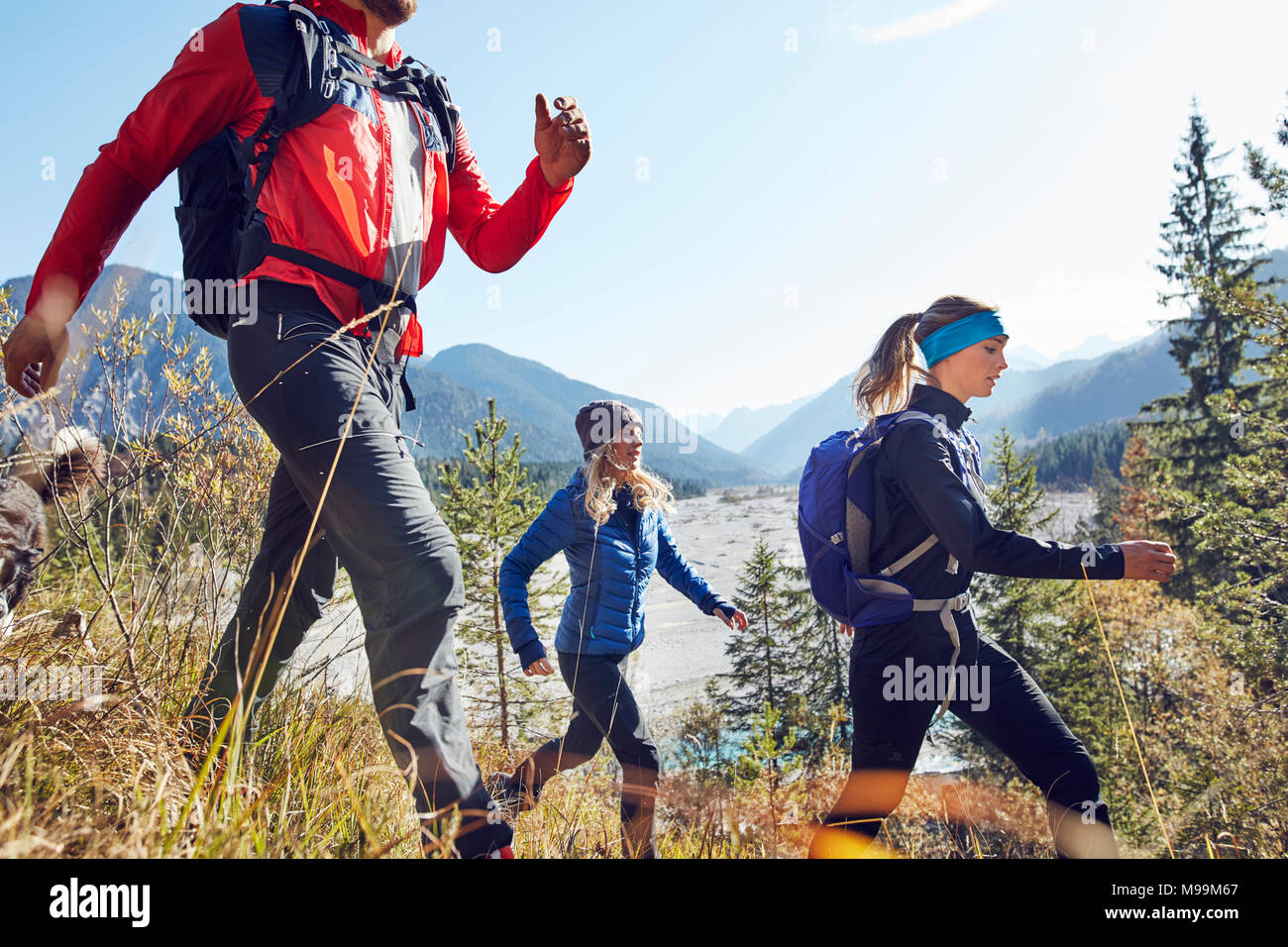 Germany, Bavaria, Karwendel, group of friends hiking in the mountains - Stock Image
