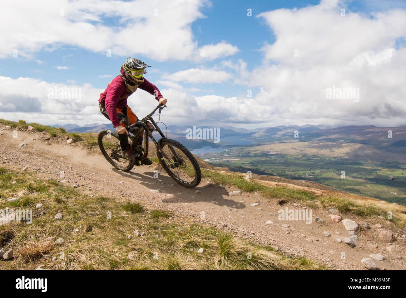 Mountain biker on downhill trail, Nevis Range, Fort William, Scotland, UK Stock Photo