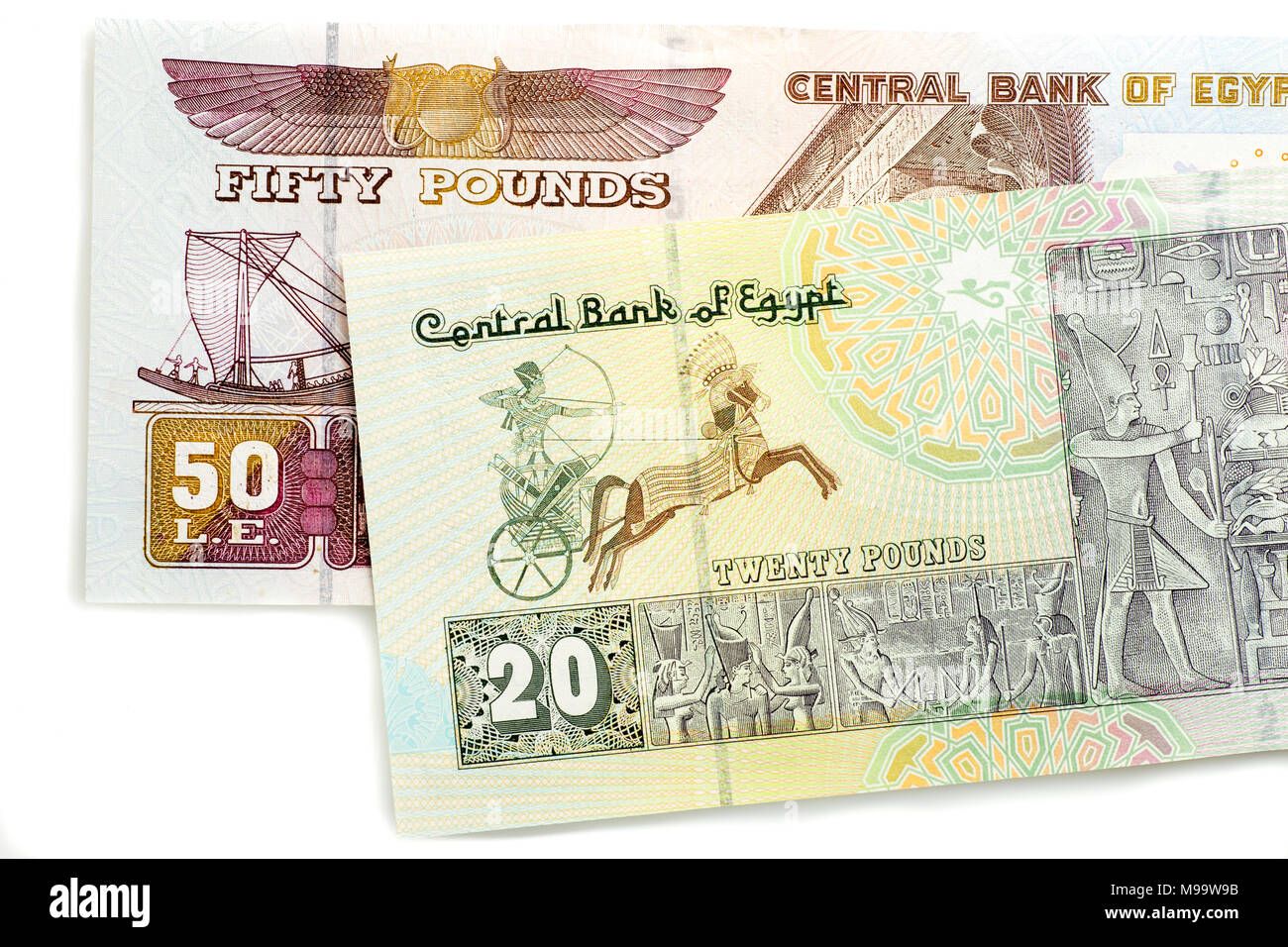 Egyptian 50 and 20 Pound notes - Stock Image