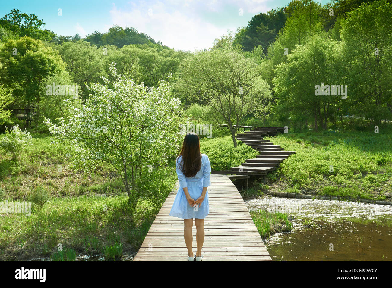 Beautiful view of nature with woman in blue skirt looking into the sky reminiscing memories of the past on a bridge that goes over a small pond. - Stock Image