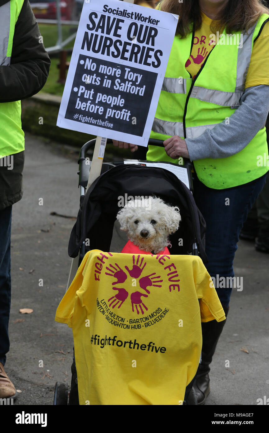 """Salford, UK. 24th March, 2018. A small dog sitting in a pram at a """"Save our nurseries"""" protest, Swinton, Salford, 24th March, 2018 (C)Barbara Cook/Alamy Live News Stock Photo"""