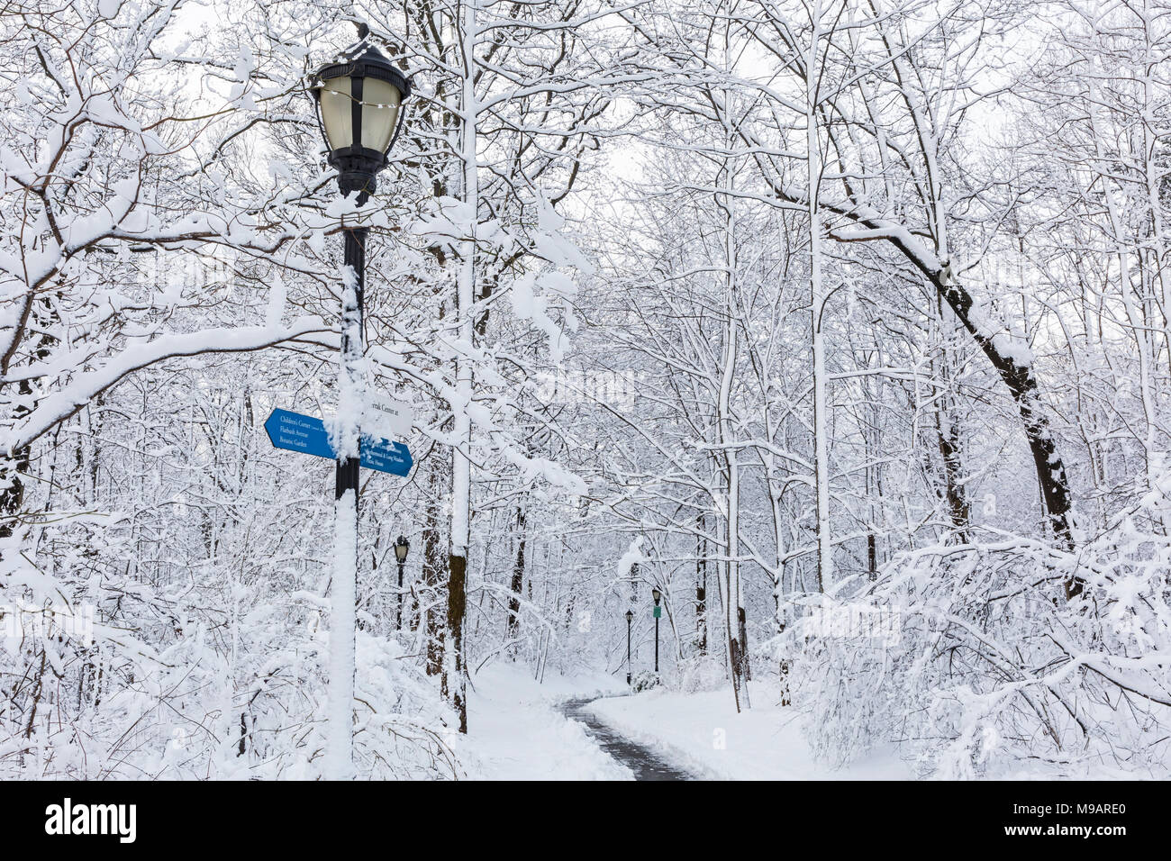 A snowy park path the morning after an Historic Spring snowstorm in Prospect Park, Brooklyn Stock Photo