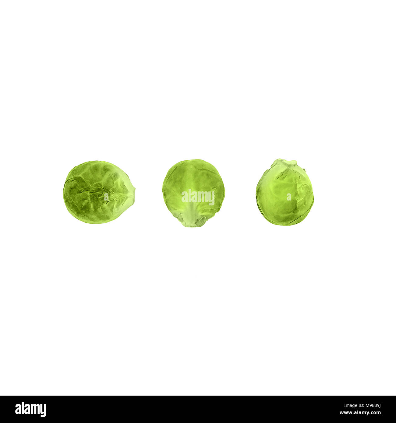 Cabbage Flat lay photo - Stock Image