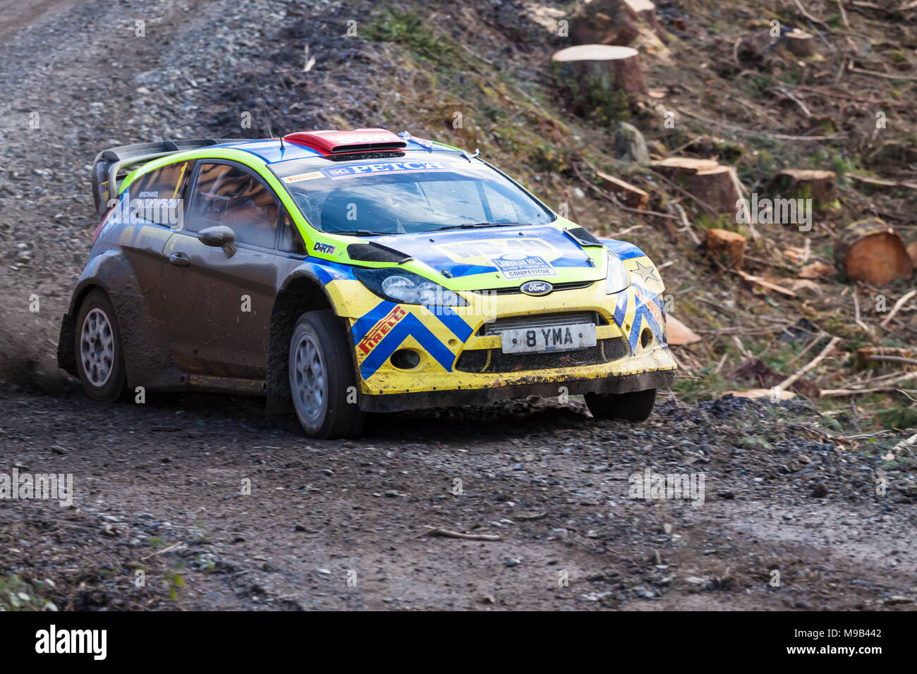 A Ford Fiesta rally car speeds around a corner in the Gwydr forest - Stock Image