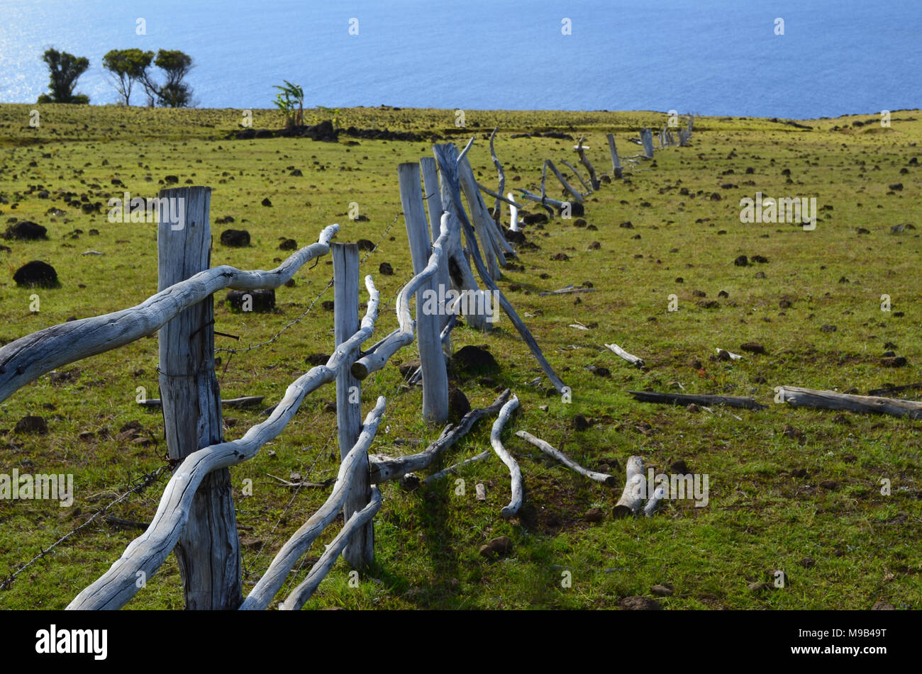 Sea view from the slopes of Terevaka volcano, Rapa Nui (Easter Island) Stock Photo