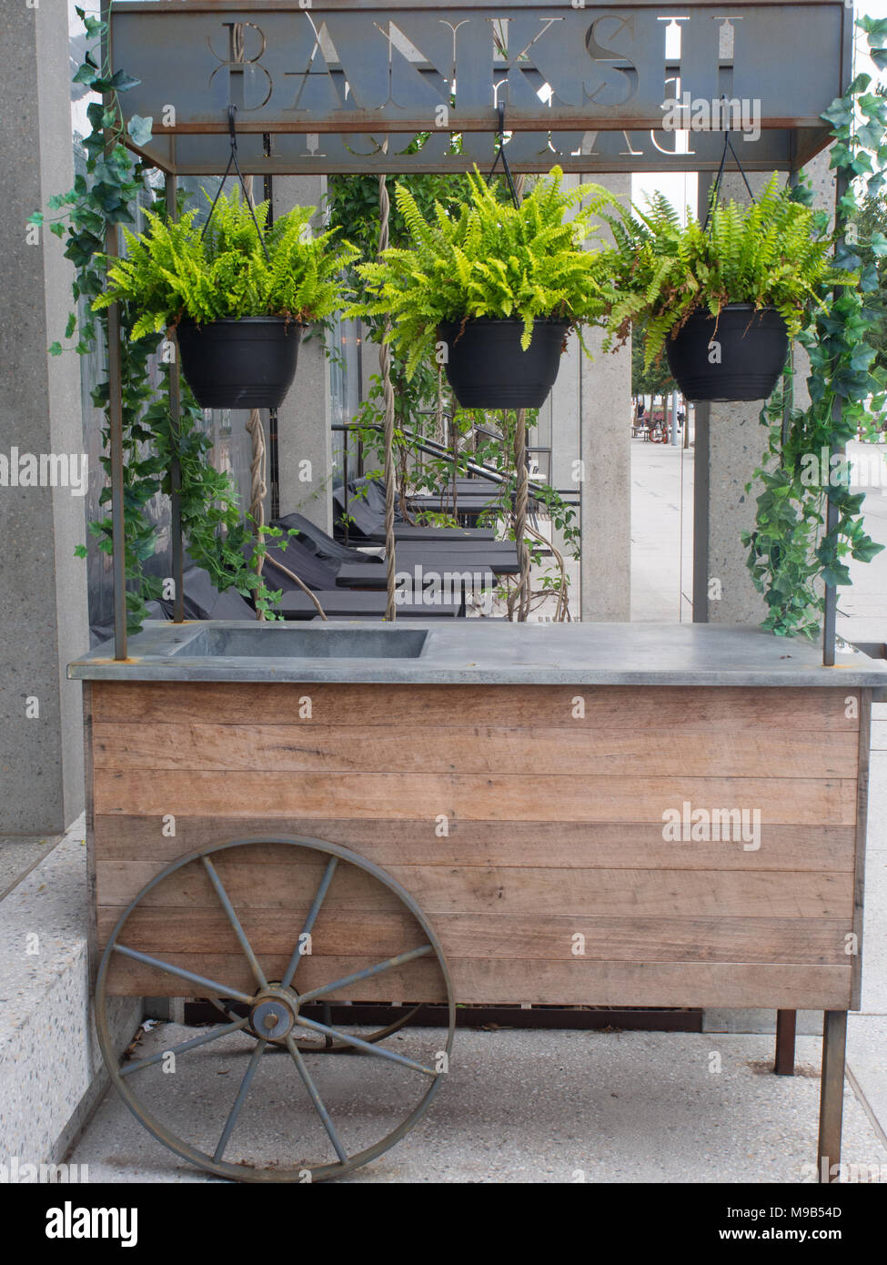 Hanging Pot Plants On A Cart - Stock Image
