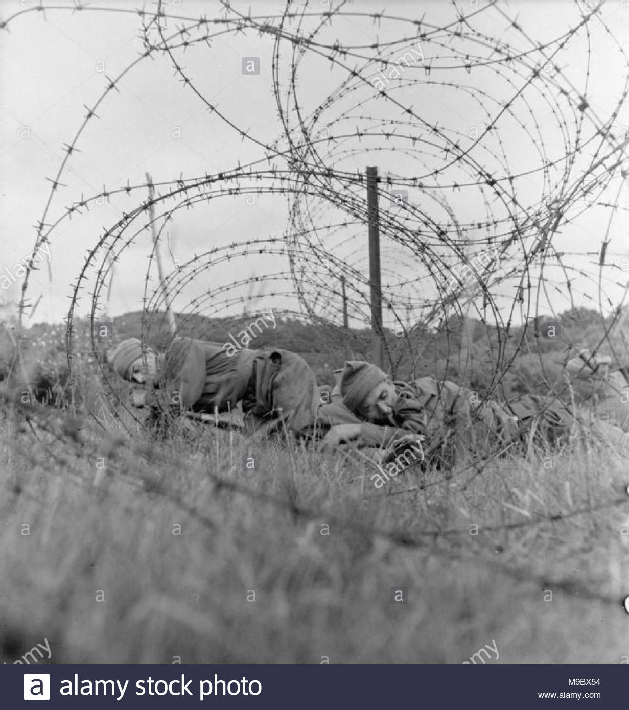 Barbed Wire Entanglements Stock Photos & Barbed Wire Entanglements ...