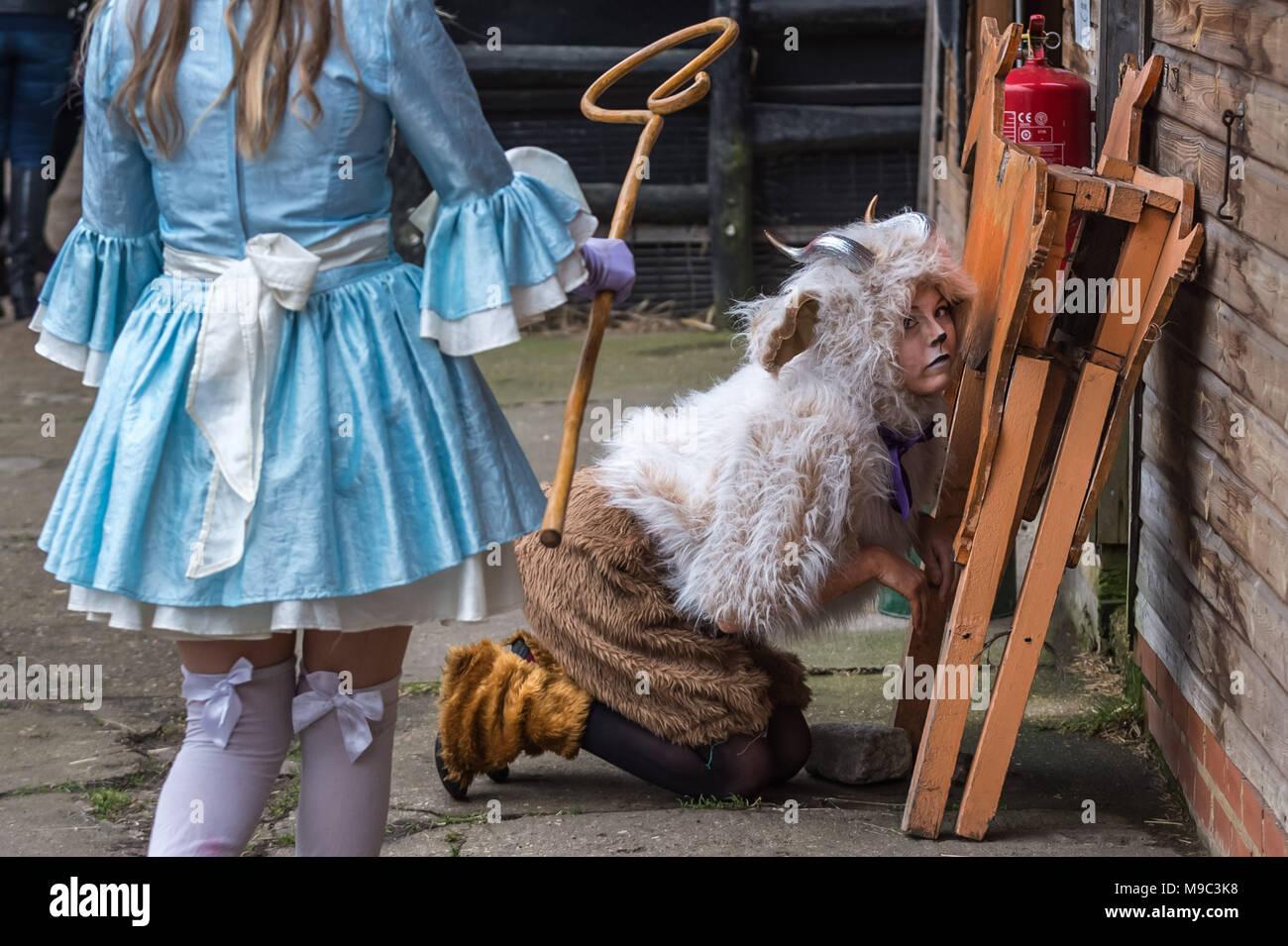London, UK. 24th March, 2018. 10th Annual Oxford vs Cambridge Goat Race at Spitalfields City Farm. Credit: Guy Corbishley/Alamy Live News - Stock Image