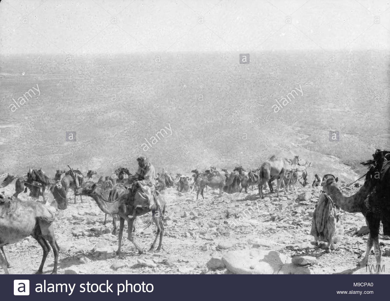 Arab Troops Stock Photos & Arab Troops Stock Images - Alamy