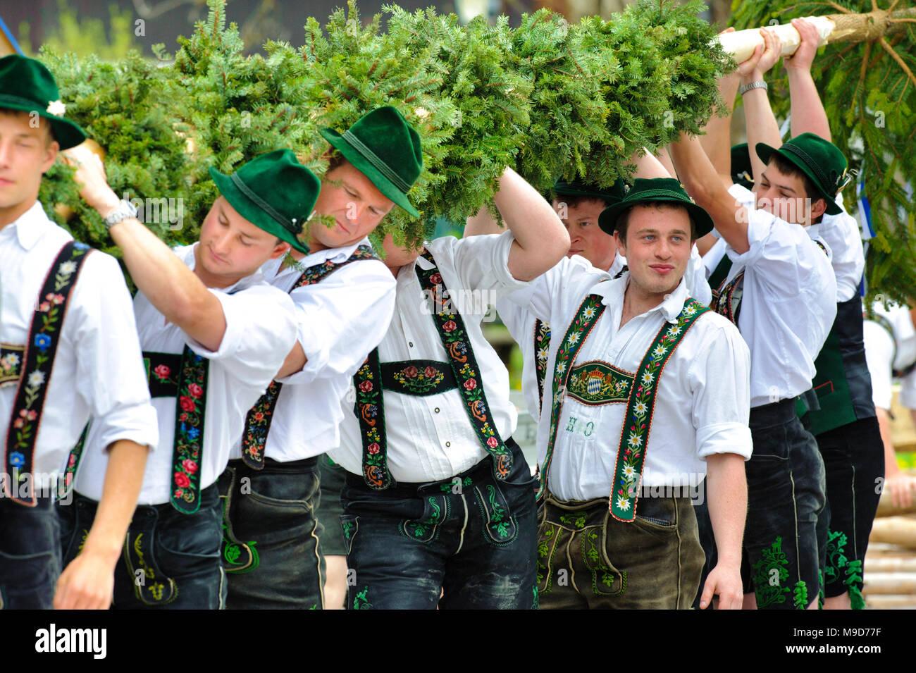 Maibaum aufstellen in Oberbayern - Stock Image
