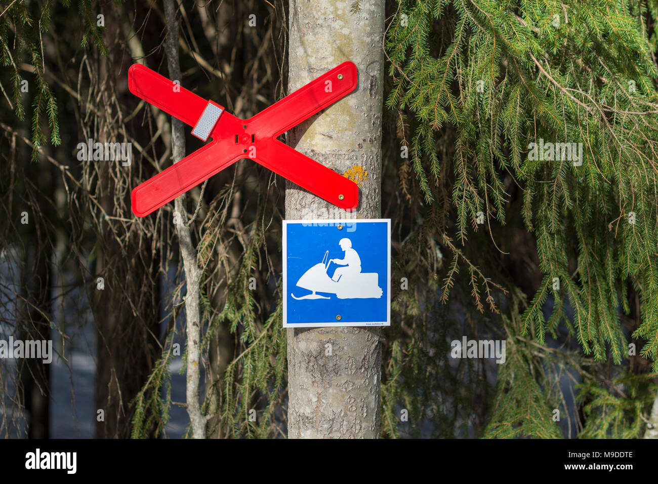 Close up of a trail crossing sign and a snowmobile sign on a tree trunk indicate that this is a designated snowmoble trail. - Stock Image