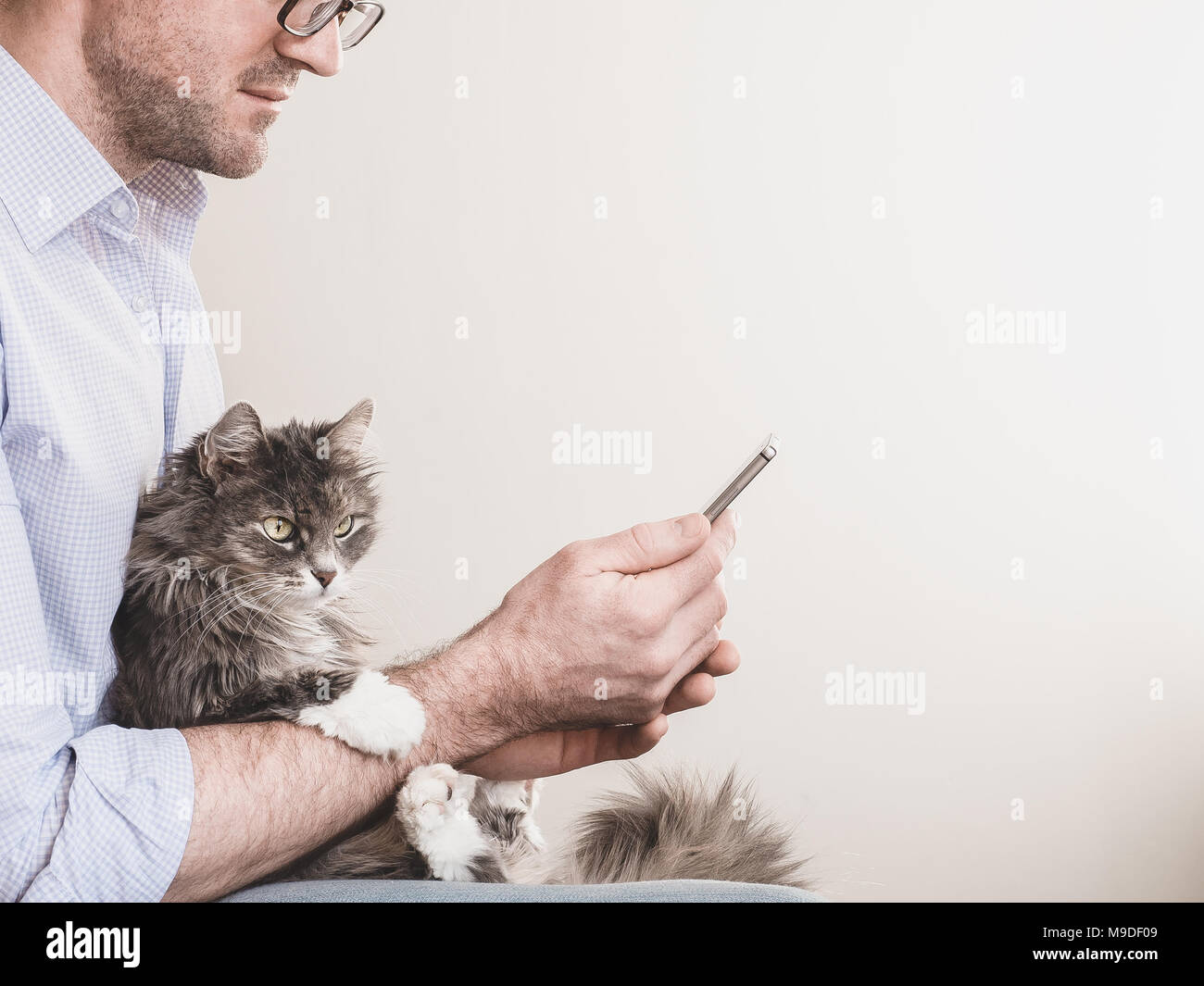 Cute man in glasses with a mobile phone on a white background holding a cute kitten. People, pets, care - Stock Image