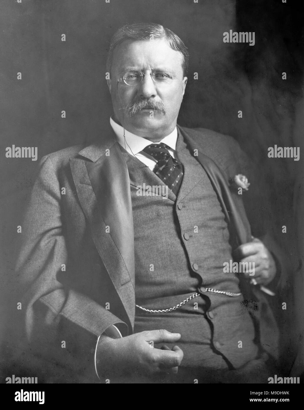 Theodore Roosevelt, Theodore Roosevelt Jr. (1858 – 1919) American statesman and writer and 26th President of the United States from 1901 to 1909 - Stock Image