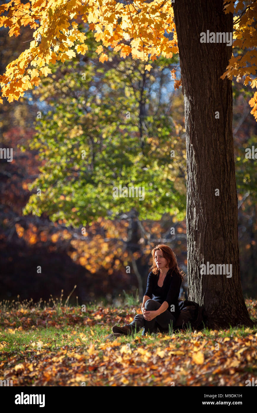 Melancholic woman rests under a tree. Warm afternoon light glows through the fall foliage, in Ringwood state park, NJ - Stock Image