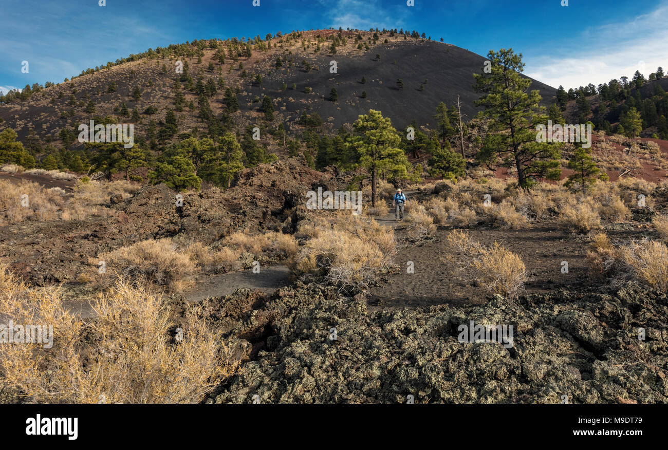 AA Lava Flows and Cinder Cones, Sunset Crater National Monument, AZ - Stock Image