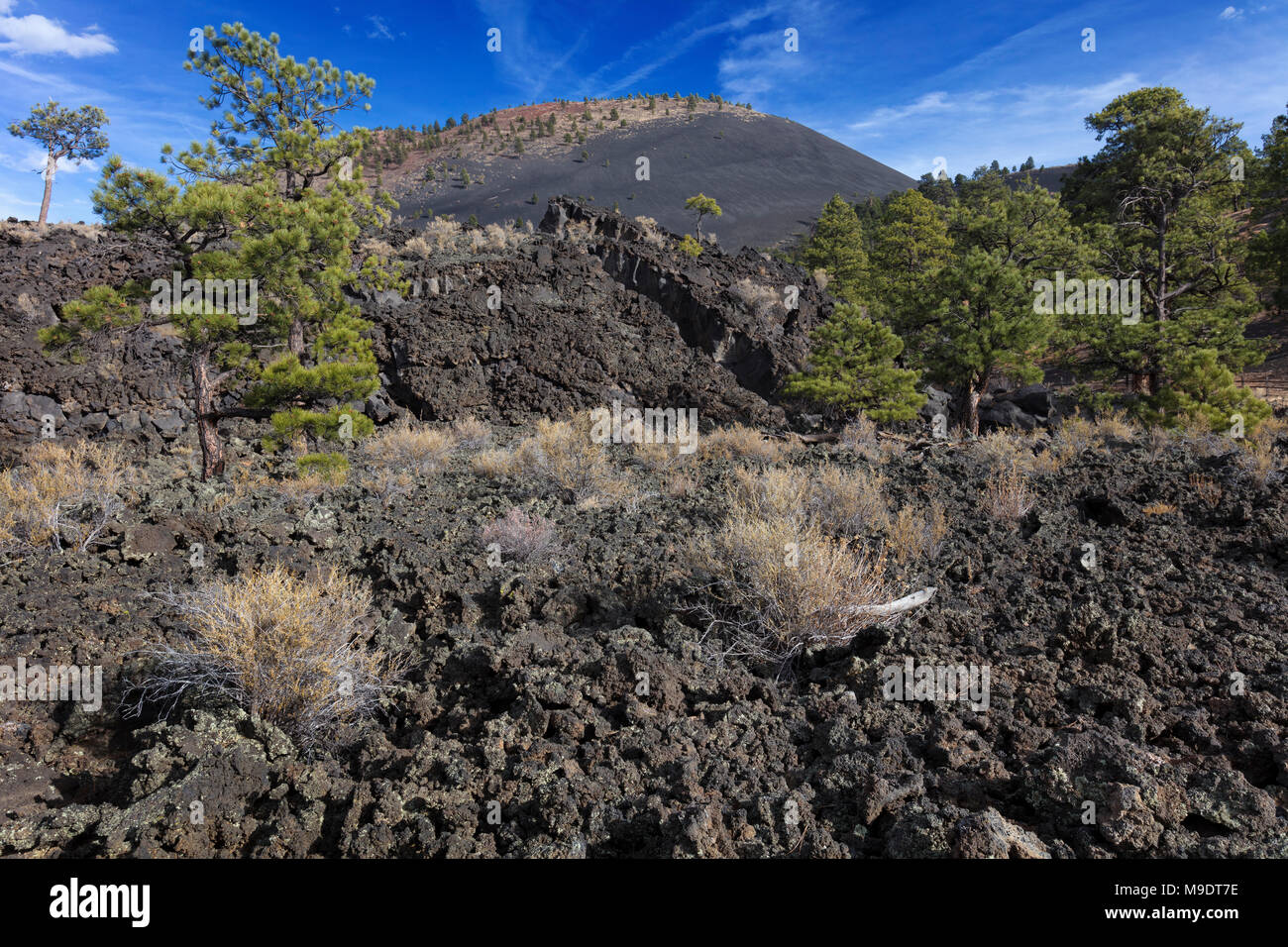 Ancient Lava AA Flow, Sunset Crater National Monument, Arizona - Stock Image