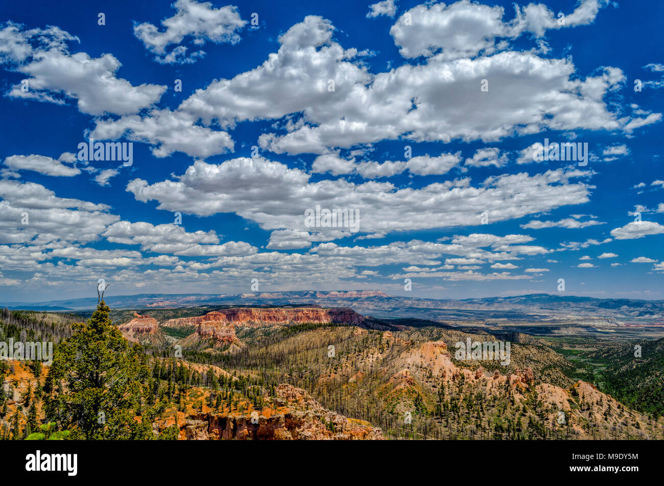 Overlooking orange mountains and green Valley under blue sky with white fluffy clouds. - Stock Image