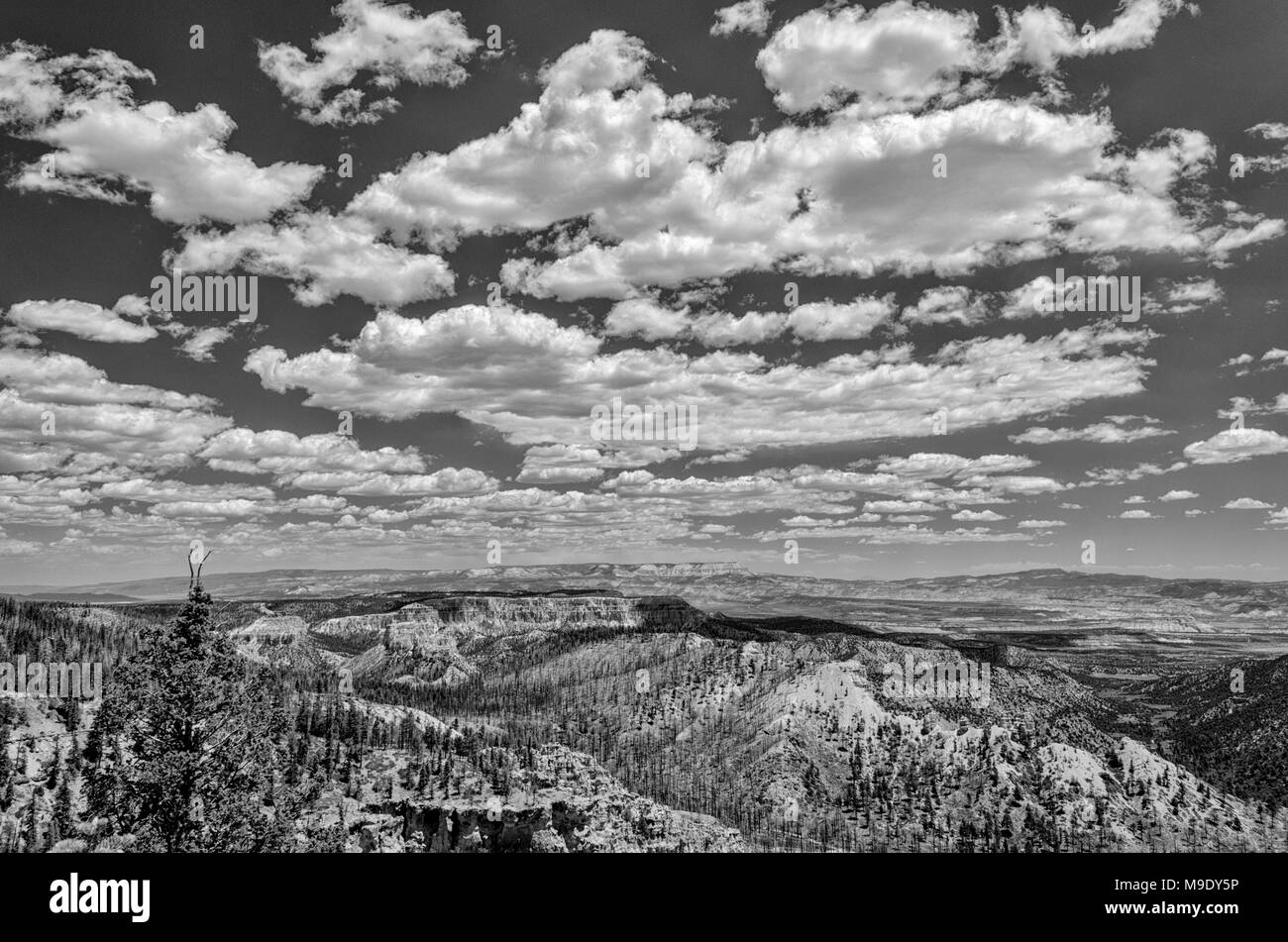 Black and white scenic over look if cliffs and valley under sky with clouds. Stock Photo