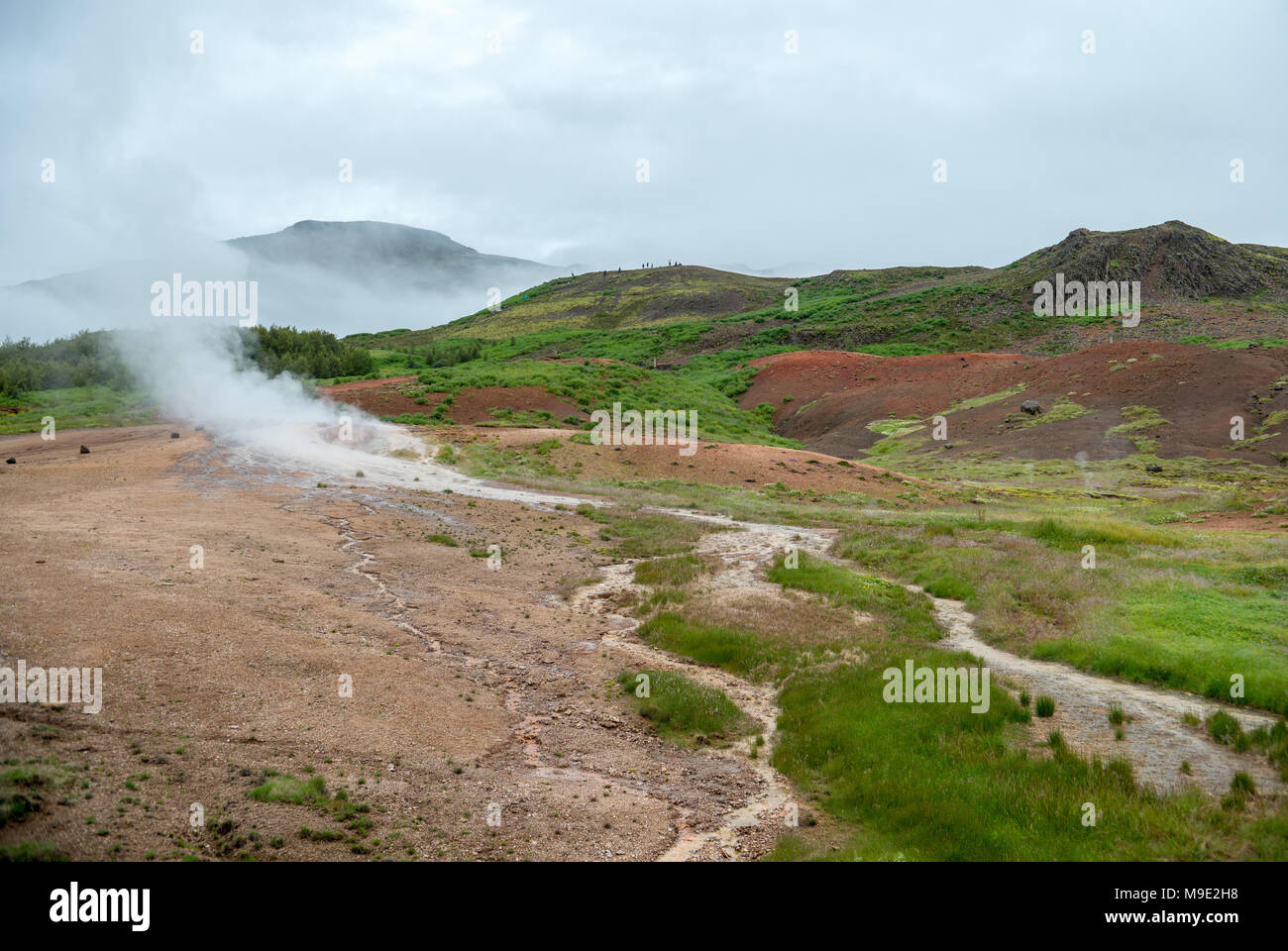 View of a Meadow with Steaming Hot Springs, Haukadalur Valley, Southern Iceland Stock Photo